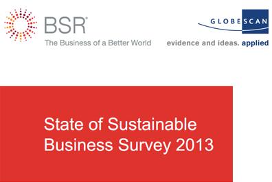 Обзор состояния устойчивого бизнеса 2013